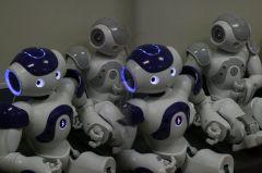 Franse robot Nao