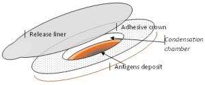 viaskin-technology