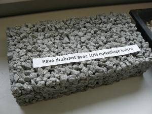 Oesterschelpen in beton