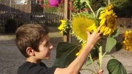 Laat u groene kansen liggen in de Franse biobased economy?