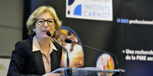 Genevieve Fioraso, Staatssecretaris voor Hoger Onderwijs en Onderzoek in het Kabinet Valls