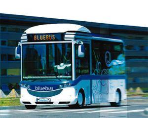 De Bluebus