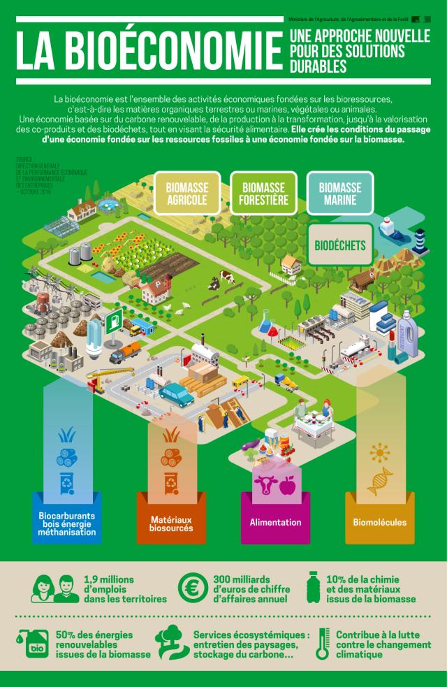 infographie_bioeconomie