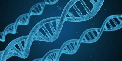 Gene event
